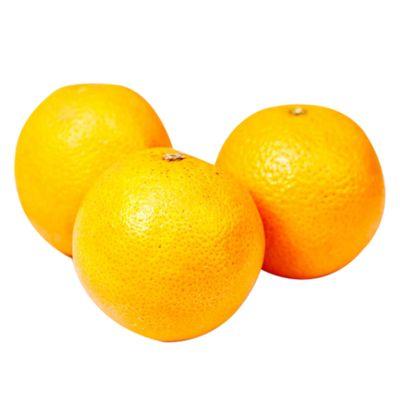 Naranja-valencia-x1-kilo