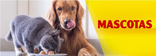 banner mascotas mobil