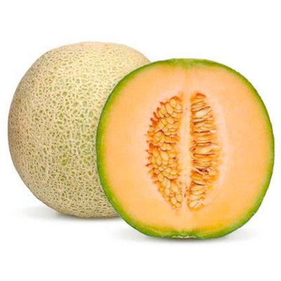 Melon-x05-kg