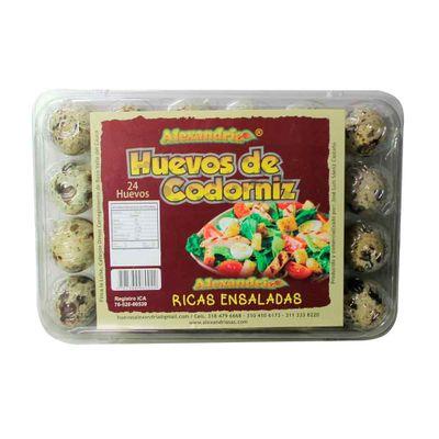 Huevo-de-codorniz-ALEXANDRIA-x24-unds_36745