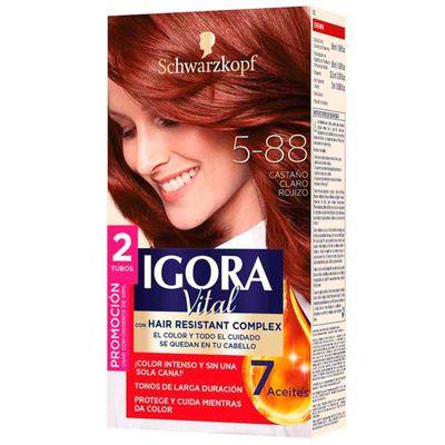 Tinte-IGORA-VITAL-5-88-DT-castano-claro_116161