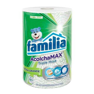 Toalla-cocina-FAMILIA-acolchada-x80-unds_44529