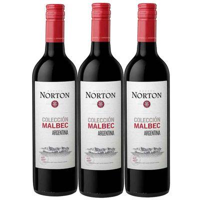 Vino-NORTON-malbec-x750-ml-2x3_29138