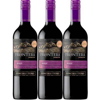 Vino-FRONTERA-premium-merlot-750ml-2x3-Fr_119531
